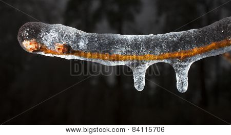 Icicles Forming