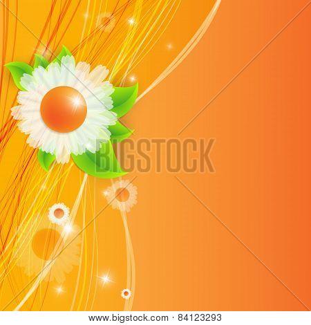 bright summer vector background