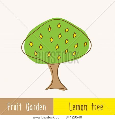 Garden Fruit Trees - Single Tree