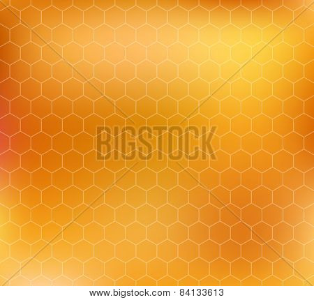 vector pattern with honeycombs