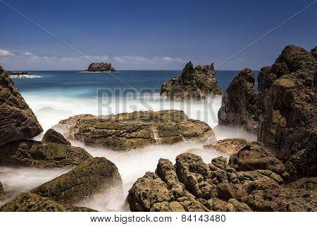 Ujungkulon Coral