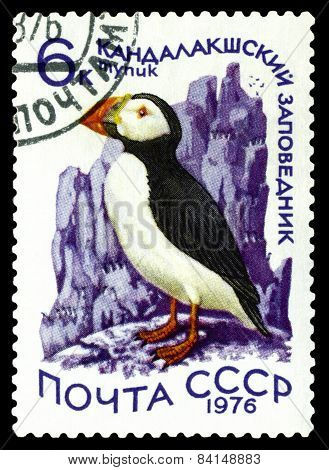 Vintage  Postage Stamp. Atlantic Puffin.