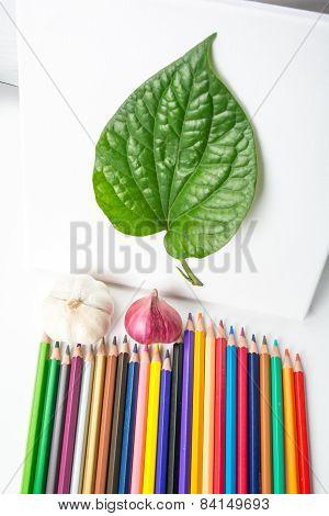 Crayons Create Natural