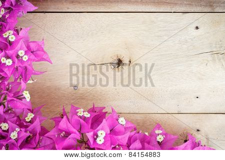 Beauty Bougainvillea Flower On Wood Background