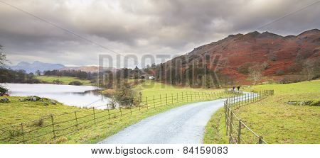 Country Lane In The Lakes