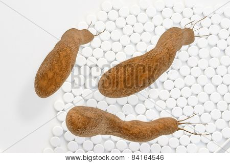 Helicobacter Pylori - 3D Rendered Illustration