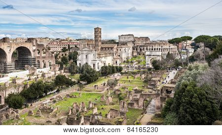 Roman Forum, View From Palatine Hill, Rome, Italy