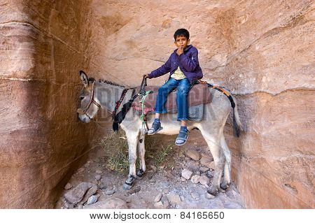 Boy On Donkey