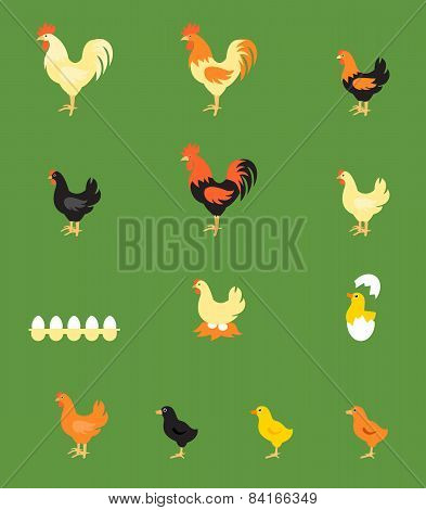 Vector Illustration of Rooster, Hen, Chick