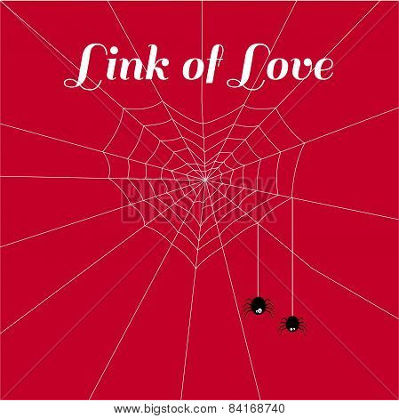spider of love