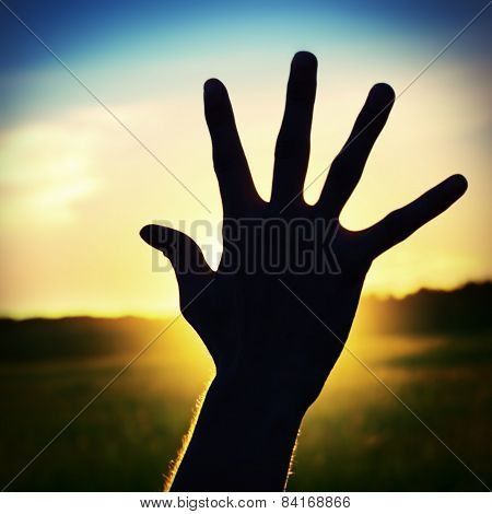 Hand On Sunset Background