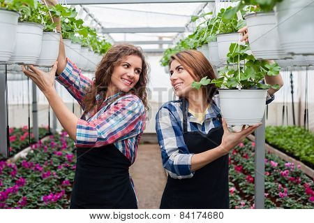 Florists women working with flowers