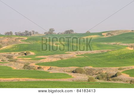 Green Fields And Rolling Hills