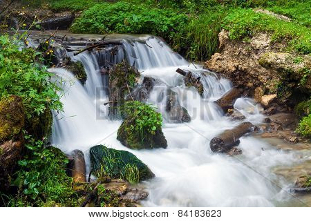 Forest Stream Surrounded By Vegetation Running Over Rocks