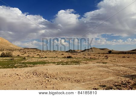 Negev Desert At The Spring On Blue Sky Background