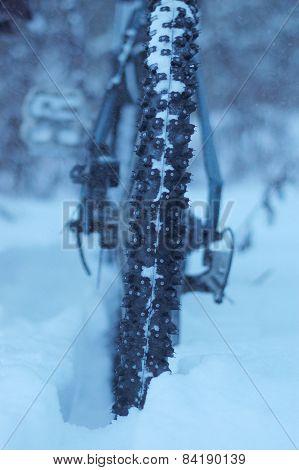 mountain biking in the winter