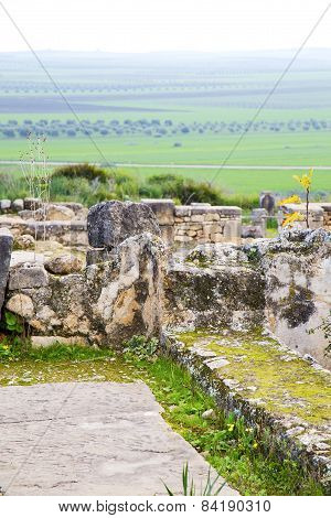 Volubilis In Morocco Africa The Old  Site