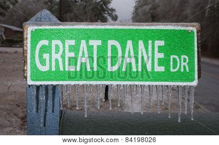 Frozen Road Sign