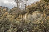 stock photo of sagebrush  - Part of a foundation in a Utah ghost town - JPG