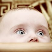 picture of bassinet  - Surprised Little Baby Portrait at the Home