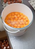 stock photo of yoke  - Eggs bucket - JPG