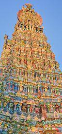 picture of meenakshi  - Colorful tower of Meenakshi Amman Temple in India - JPG