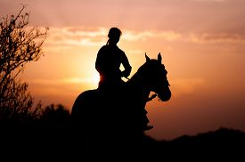 foto of horse girl  - Silhouette of a girl riding a horse rider on the background of the rising sun - JPG