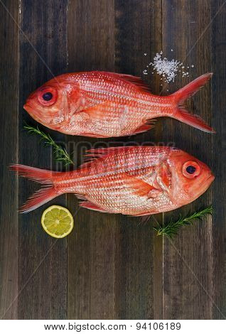 Two Fresh Red Snappers