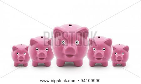 Group of pink piggy banks