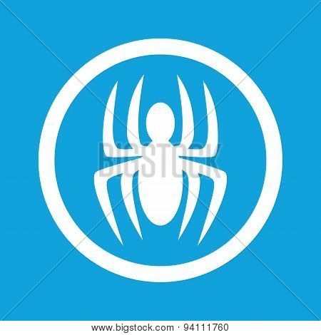 Spider sign icon