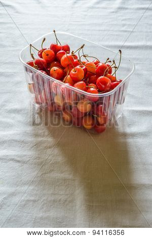 Morello Cherries