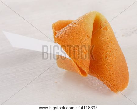 Fortune Cookie  On A White Background.