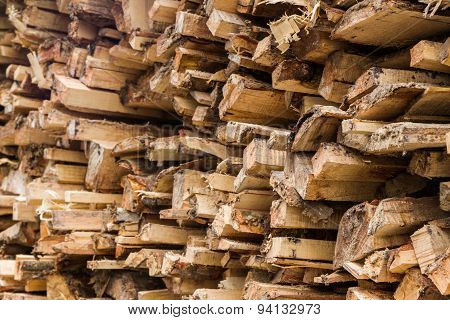 Stacked Tree Wood Logs