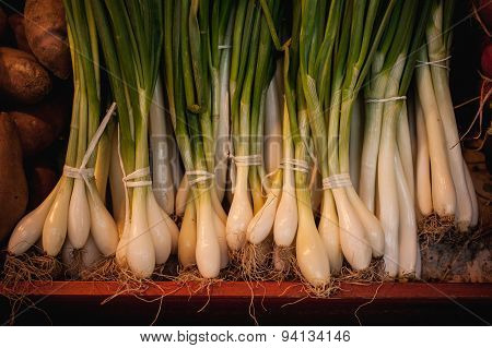 Bunch Of Spring Onions Sold On Market
