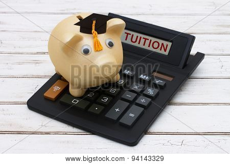 Calculating Your Tuition Fees