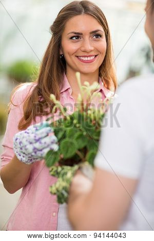 Beautiful woman enjoy in nurturing flower