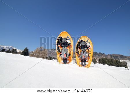 Two Snowshoes In Mountains In Winter