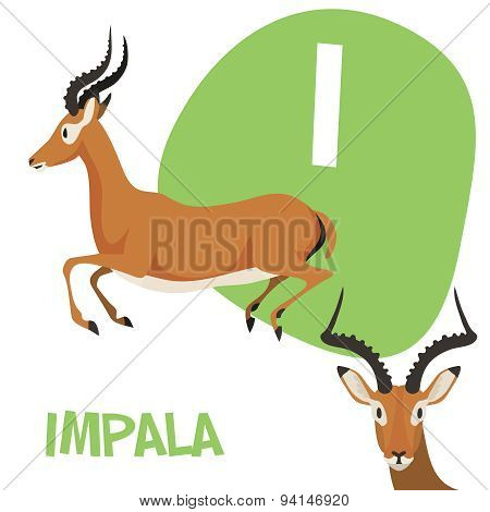 Funny cartoon animals vector alphabet letter set for kids . I is Impala