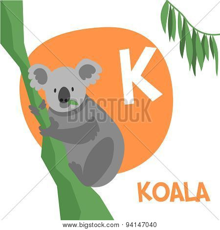 Funny cartoon animals vector alphabet letter set for kids. K is Koala.