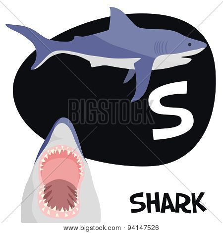 Funny cartoon animals vector alphabet letter set for kids. S is Shark.