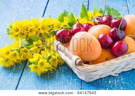 Apricots, Cherries In A Basket And Flowers Loosestrife