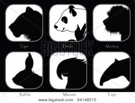 Tiger Monkey Panda Tapir Macaws Rabbit Black And White
