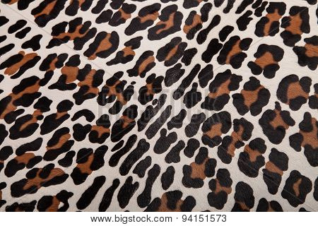 Real Leopard Skin texture background