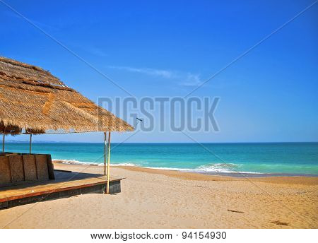 A tropical view of the beach in Golden Sands, near Varna, Bulgaria