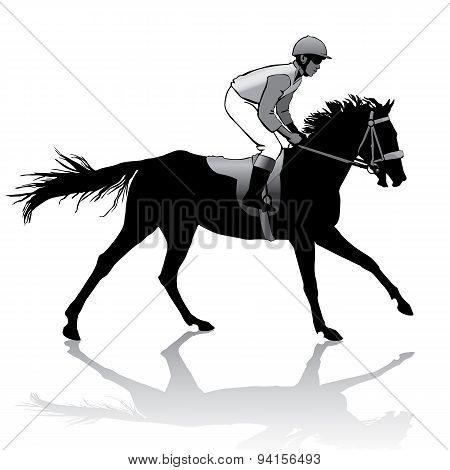 Jockey On Horse