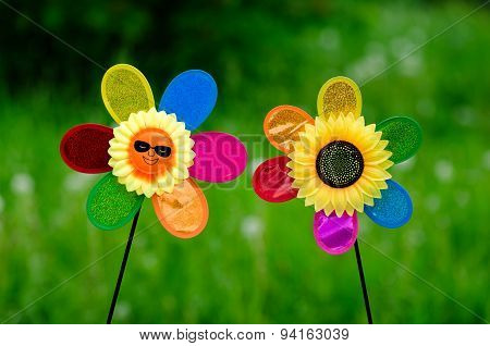 Nice sunflowers with smile face