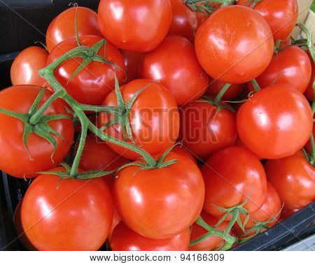 Tomatoes at the greengrocer