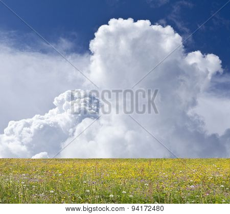 Blue sky, colorful fields and background with clouds.