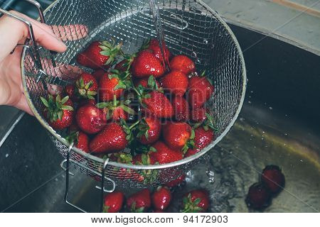 Rinsing Fresh Organic Strawberries