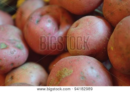 Closeup Of Red New Potatoes In Pile.